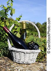 glass and bottle of wine and grappes in basket - bottle of...