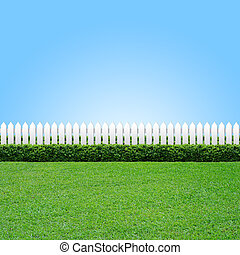 White fence and green grass - White fence and gree grass on...