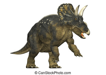 diceratops dinosaur attacking a herbivorous dinosaur from...