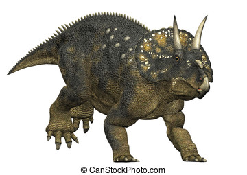 diceratops dinosaur running a herbivorous dinosaur from the...