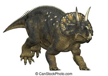 diceratops dinosaur running a herbivorous dinosaur from the...