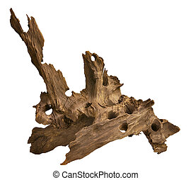 Driftwood for aquarium - Driftwood isolated in white...