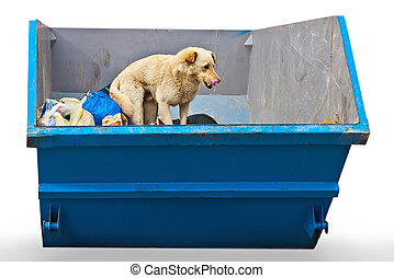 dustbin - dog in dustbin