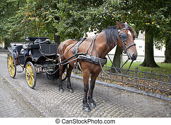 Carriage horse in Brugge, Belgium - Carriage horse waiting...