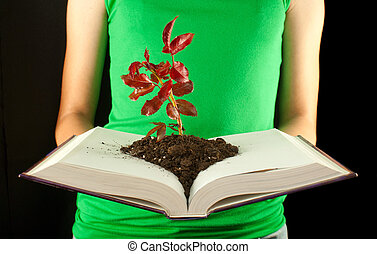 Woman with open book and seedling grown from it
