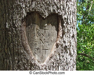 My Heart Belongs to You - Image of a tree carving of heart...
