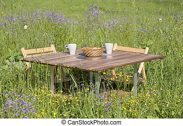 Dinner table in the middle of lush meadow