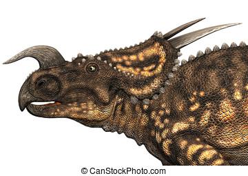 Einiosaurus Dinosaur Closeup - Einiosaurus dinosaur closeup,...