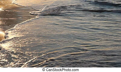 Golden sands. - Golden sunset on a sandy beach. Summer in...