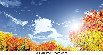 Wonderful autumn landscape