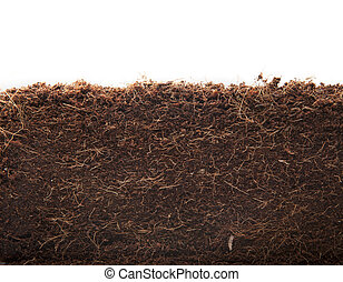 abstract Coconut Coir compost background - Coconut Coir...