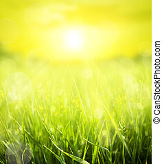 abstract summer background - abstract summer  background