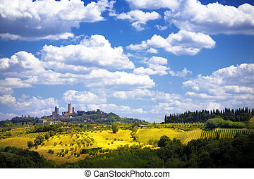 Art view of the medieval Tuscan castle and olive groves -...