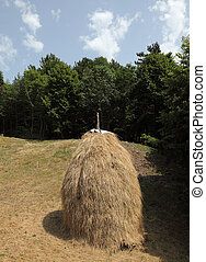 Hay stack on a meadow in Croatia