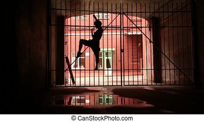 Young woman performs modern dance hanging on lattice gate -...