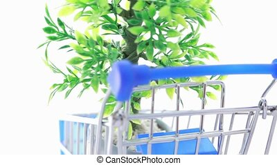 Artificial ornamental plant in flowerpot inside shopping trolley, composition rotates counterclockwise, close-up view