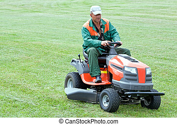 Professional lawn mowing by petrol lawn mower