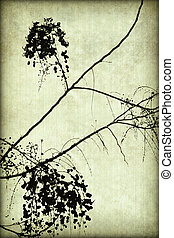 Black Blossom Silhouette on Ribbed Parchment with Frame