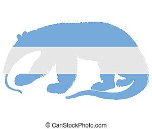 Anteater Argentina