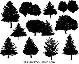 Christmas tree silhouettes isolated on white