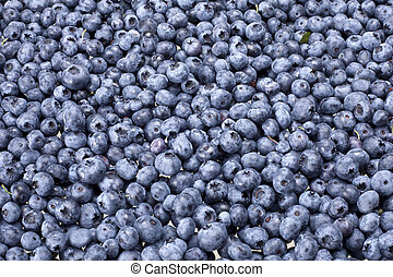 Blueberry - A plate with many blueberries