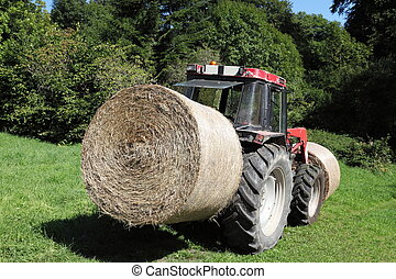 Transporting Hay Bales For Fodder - A circular hay bale is...