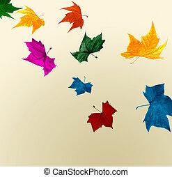 Multicolored falling autumn leaves