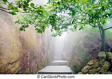 Mountain chinese zen path - Mountain path surrounded by a...