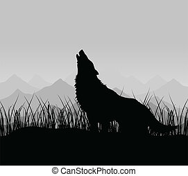 Wolf in mountains - The wolf howls in mountains in a fog A...