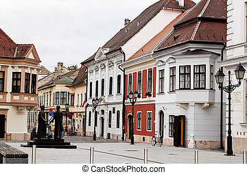 Hungary, Gyor - The city of Gyor in Hungary is always worth...