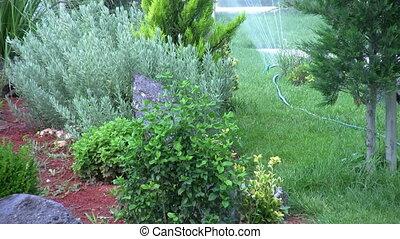 Sprinklers in the garden