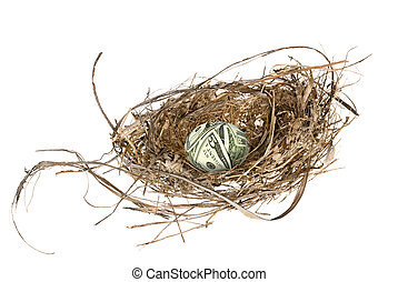 Financial nest egg - An money egg in its nest waiting to...