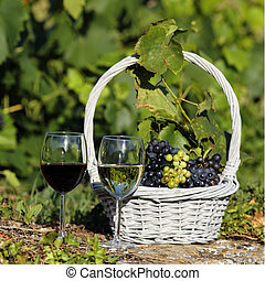two glasses of wine and grappes in basket in a field