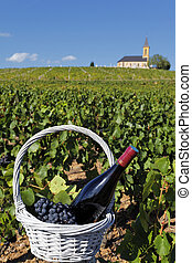 bottle of wine and grappes in basket and church in France