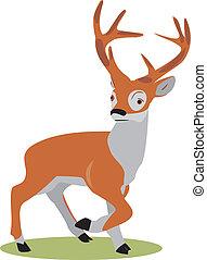Wild deer. A fast deer