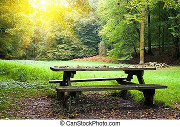 野餐, 地方
