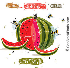 Watermelon - vector illustration of watermelon surrounded by...