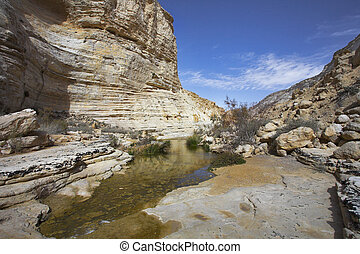 Drying up stream in gorge. - A boggy part of a stream En...