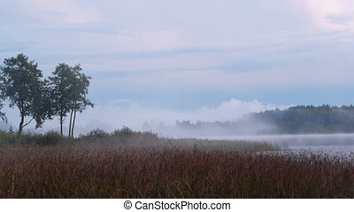 Birth of fog on the lake