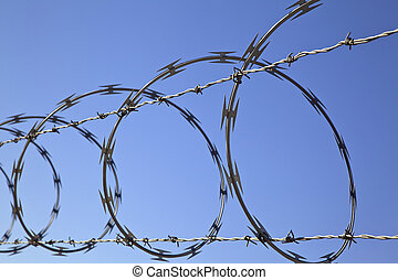 Barbed Concertina Wire on Fence, Security Device - Barbed...