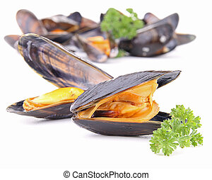 mussel - group of boiled mussel