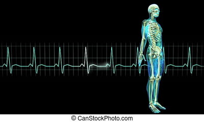 figure and electrocardiogram - image of human body