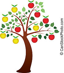 apple tree - vector apple tree with fruits