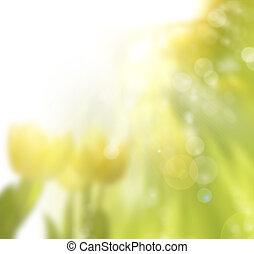 spring background - art spring background