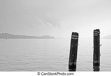 Lake - Two poles in the landscape of a lake, black and white