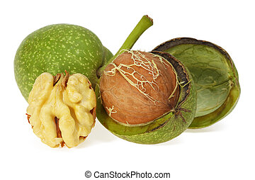 Green walnut, peeled and fresh kernel, on a white background...
