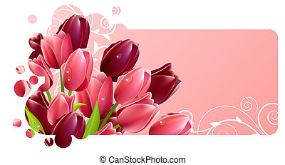 Frame with tulip flowers