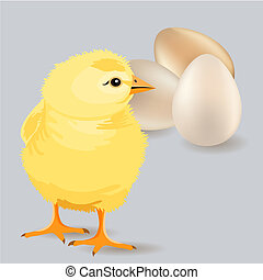 Small yellow chicken walking and three eggs