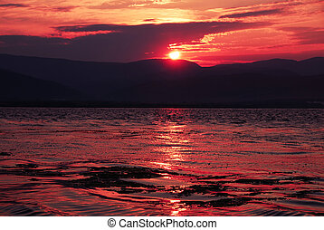 Sunrise on riverbank - beautiful pink sunrise over Danube in...