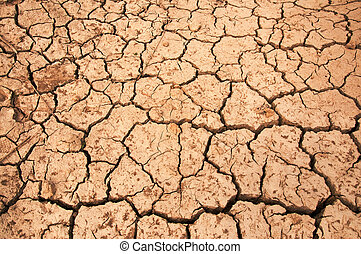 Dry land texture, background image